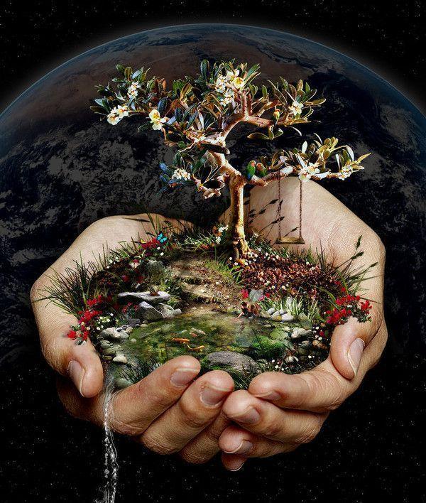Protégeons la nature,elle est l'avenir de notre descendance