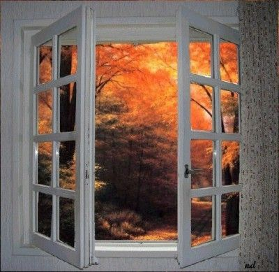 Fenêtre à l'automne