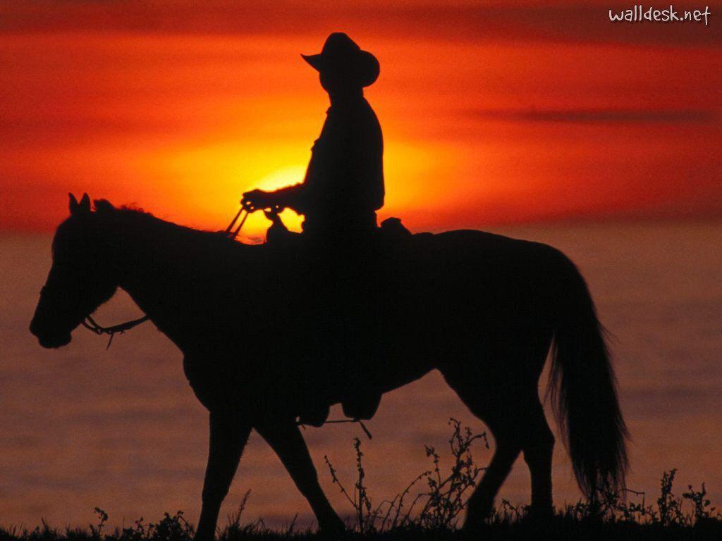 Cowboy on horse